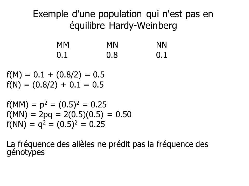 Exemple d une population qui n est pas en équilibre Hardy-Weinberg MMMNNN 0.10.80.1 f(M) = 0.1 + (0.8/2) = 0.5 f(N) = (0.8/2) + 0.1 = 0.5 f(MM) = p 2 = (0.5) 2 = 0.25 f(MN) = 2pq = 2(0.5)(0.5) = 0.50 f(NN) = q 2 = (0.5) 2 = 0.25 La fréquence des allèles ne prédit pas la fréquence des génotypes