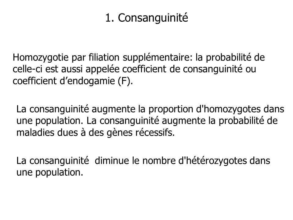 1. Consanguinité Homozygotie par filiation supplémentaire: la probabilité de celle-ci est aussi appelée coefficient de consanguinité ou coefficient de