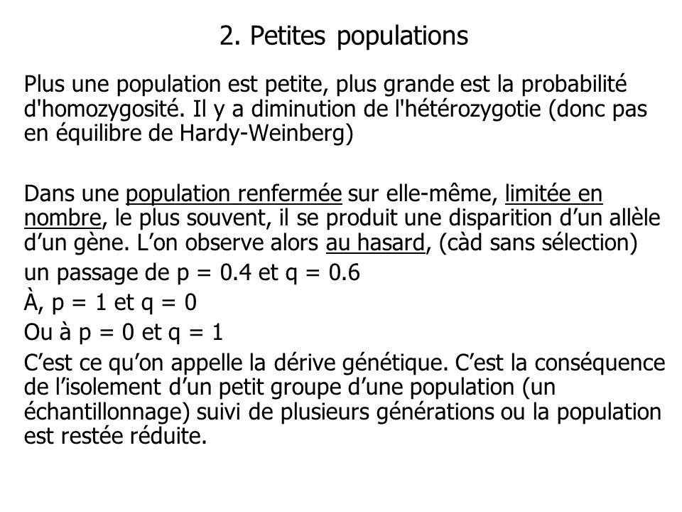 2. Petites populations Plus une population est petite, plus grande est la probabilité d'homozygosité. Il y a diminution de l'hétérozygotie (donc pas e