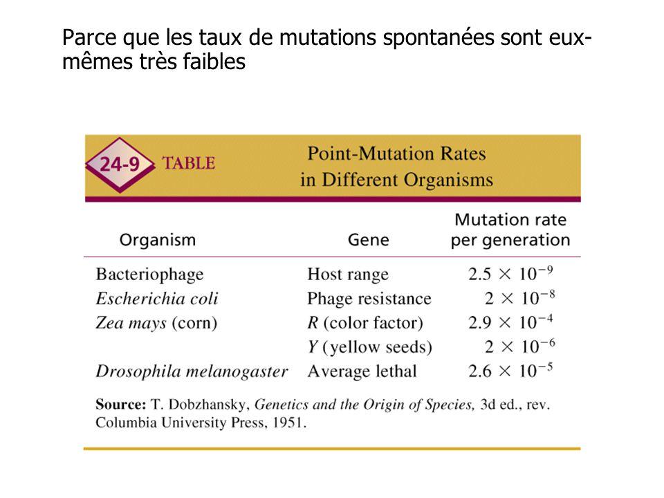 Parce que les taux de mutations spontanées sont eux- mêmes très faibles