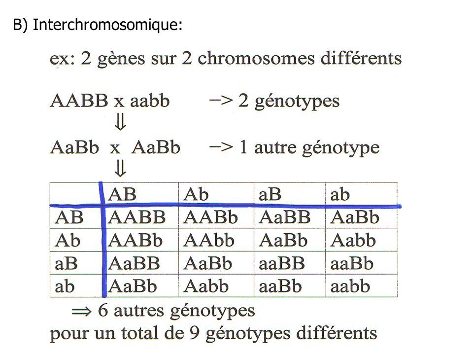 Probabilité d avoir 2 humains identiques même sans la recombinaison intrachromosomique (c.à-d., même s il n y avait que de la recombinaison interchromosomique) (et qu ils n étaient pas des jumeaux(elles) identiques) * L homme donne 23 de ses 46 chromosomes * La femme donne 23 de ses 46 chromosomes * p (homme donne le même chromosome #1 à 2 enfants différents) = 1/2 –23 chromosomes = (1/2 ) 23 * p (femme donne le même chromosome #1 à 2 enfants différents) = 1/2 –23 chromosomes = (1/2) 23 * homme et femme = (1/2) 23 x (1/2) 23 = (1/ 8 388 608) (1/ 8 388 608) = 1/70 x 10 12 = une chance sur 70 000 milliards