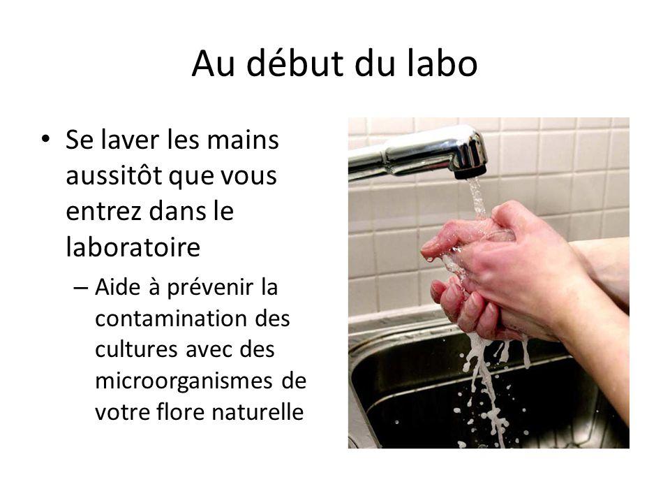 Au début du labo Se laver les mains aussitôt que vous entrez dans le laboratoire – Aide à prévenir la contamination des cultures avec des microorganismes de votre flore naturelle