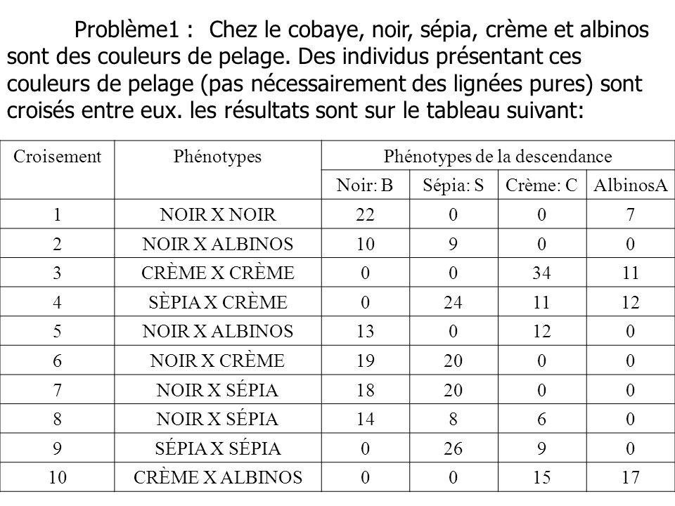 CroisementPhénotypesPhénotypes de la descendance Noir: BSépia: SCrème: CAlbinosA 1NOIR X NOIR22007 2NOIR X ALBINOS10900 3CRÈME X CRÈME003411 4SÈPIA X