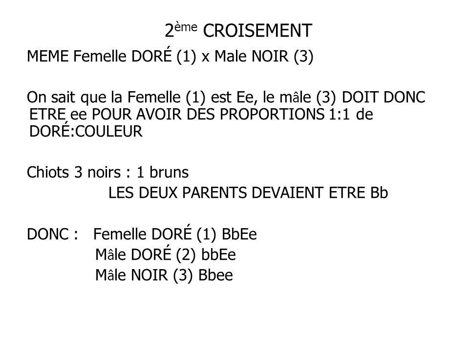 2 ème CROISEMENT MEME Femelle DORÉ (1) x Male NOIR (3) On sait que la Femelle (1) est Ee, le m â le (3) DOIT DONC ETRE ee POUR AVOIR DES PROPORTIONS 1