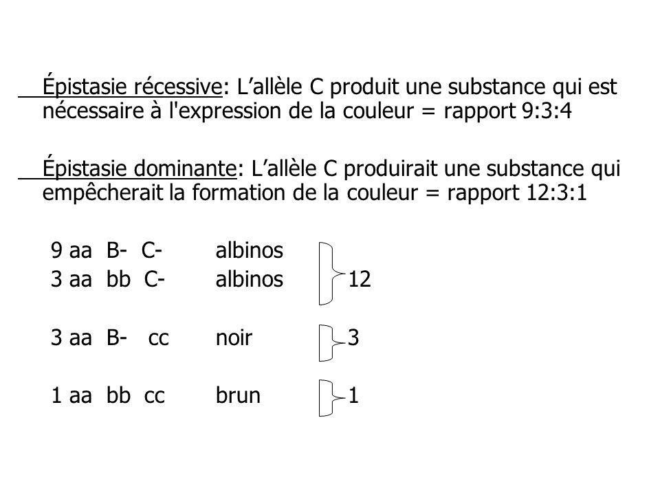 Épistasie récessive: Lallèle C produit une substance qui est nécessaire à l'expression de la couleur = rapport 9:3:4 Épistasie dominante: Lallèle C pr