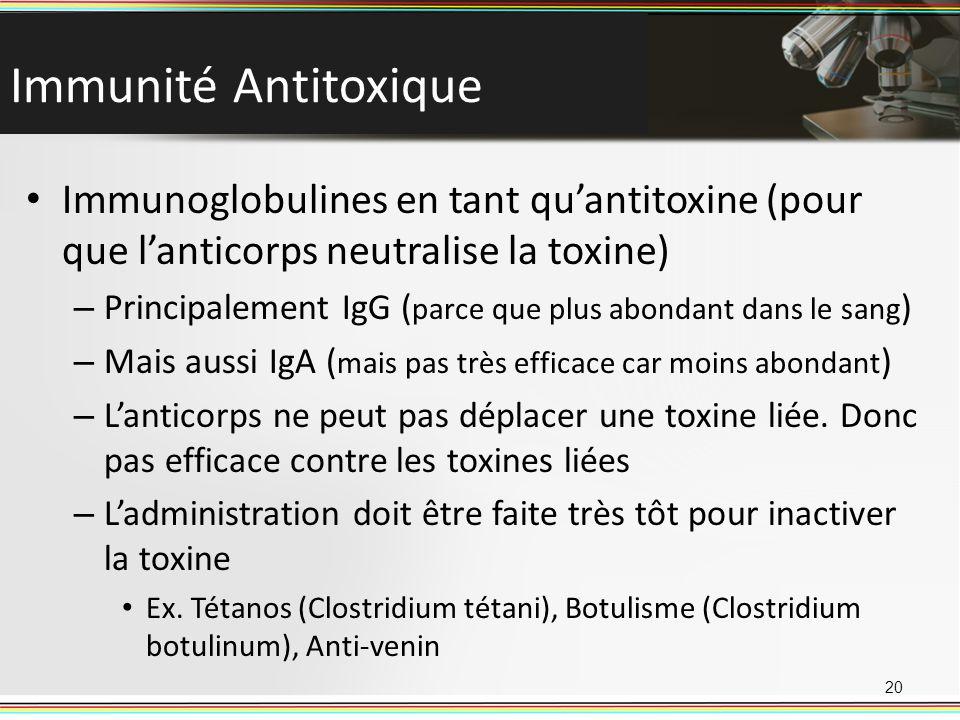 Immunité Antitoxique Immunoglobulines en tant quantitoxine (pour que lanticorps neutralise la toxine) – Principalement IgG ( parce que plus abondant d