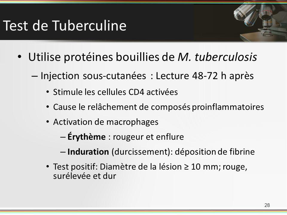 Test de Tuberculine Utilise protéines bouillies de M. tuberculosis – Injection sous-cutanées : Lecture 48-72 h après Stimule les cellules CD4 activées