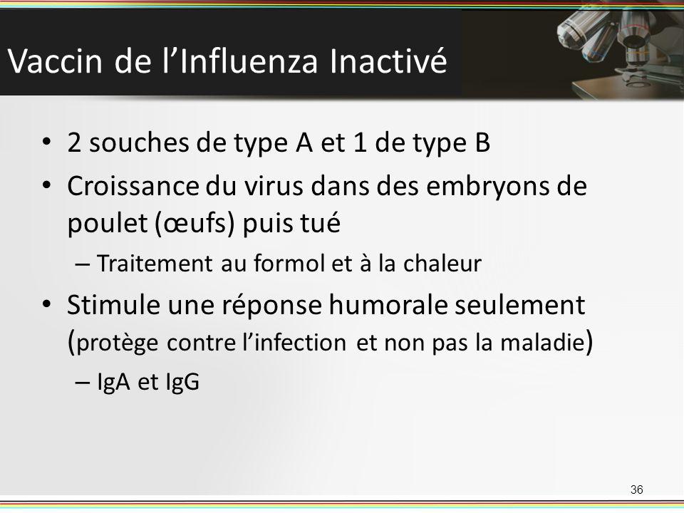 Vaccin de lInfluenza Inactivé 2 souches de type A et 1 de type B Croissance du virus dans des embryons de poulet (œufs) puis tué – Traitement au formo
