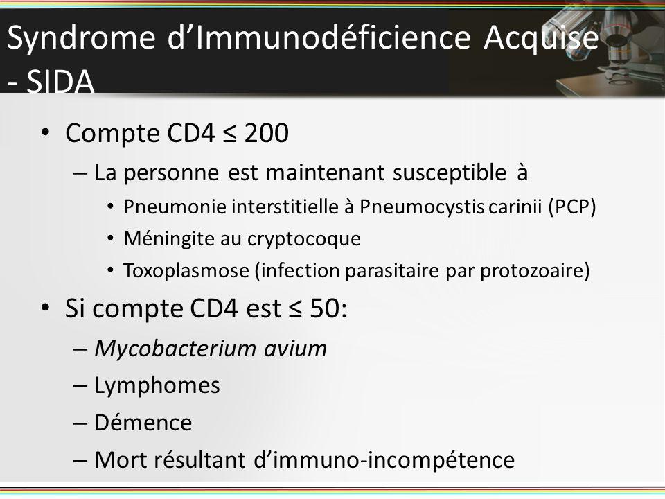 Syndrome dImmunodéficience Acquise - SIDA Compte CD4 200 – La personne est maintenant susceptible à Pneumonie interstitielle à Pneumocystis carinii (P