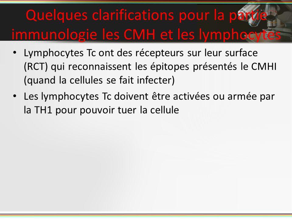 Lymphocytes Tc ont des récepteurs sur leur surface (RCT) qui reconnaissent les épitopes présentés le CMHI (quand la cellules se fait infecter) Les lymphocytes Tc doivent être activées ou armée par la TH1 pour pouvoir tuer la cellule Quelques clarifications pour la partie immunologie les CMH et les lymphocytes