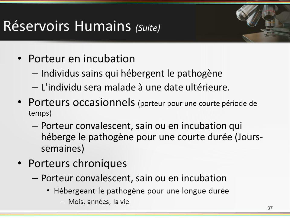 Réservoirs Humains (Suite) Porteur en incubation – Individus sains qui hébergent le pathogène – L'individu sera malade à une date ultérieure. Porteurs