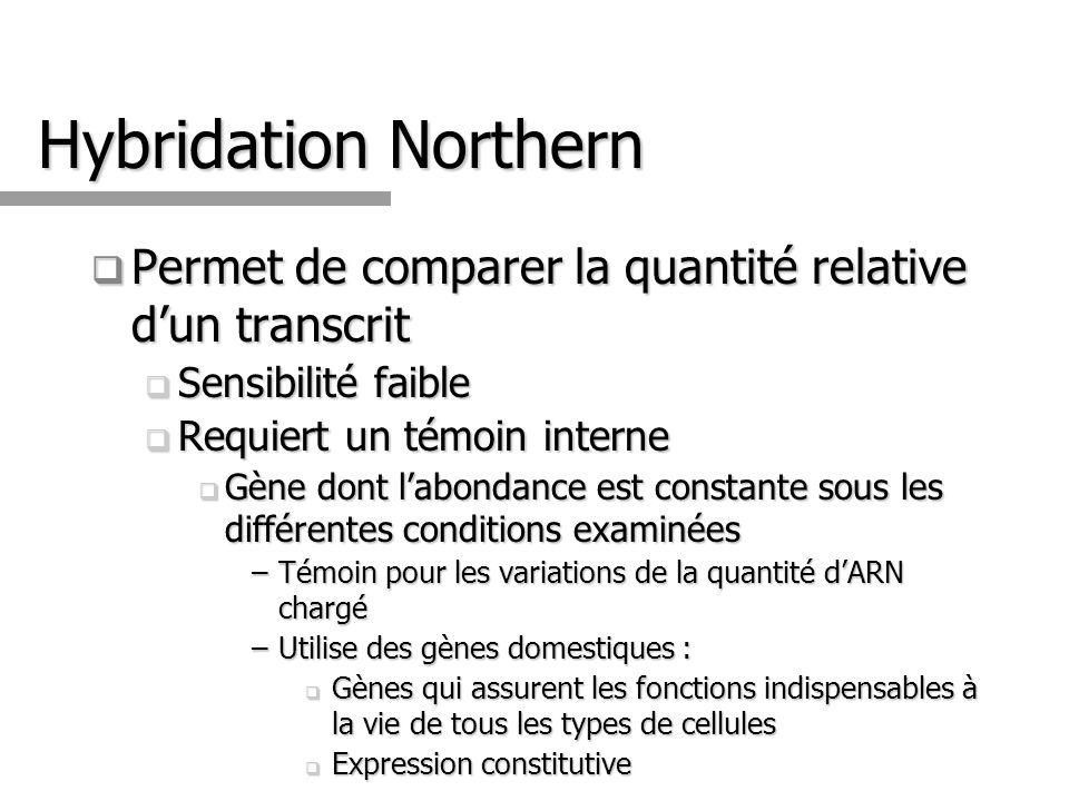 Hybridation Northern Permet de comparer la quantité relative dun transcrit Permet de comparer la quantité relative dun transcrit Sensibilité faible Se