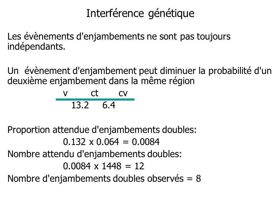 Interférence génétique Les évènements d enjambements ne sont pas toujours indépendants.