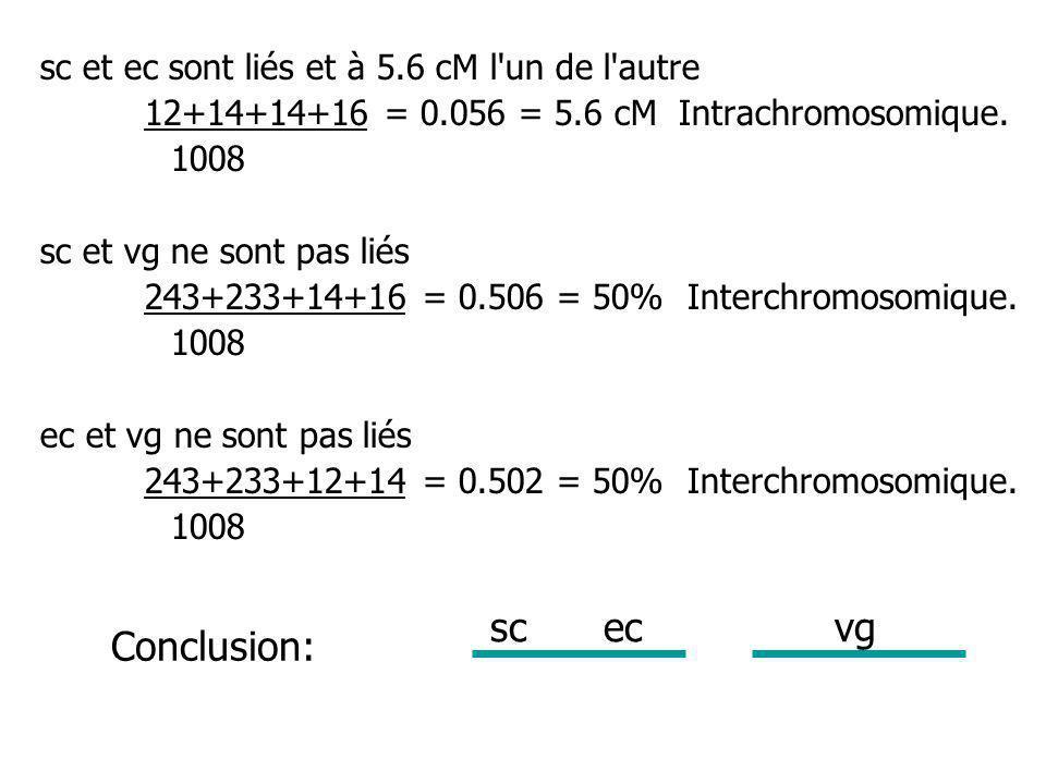 3 loci: v = couleur des yeux vermillon cv = absence d une nervure particulière de l aile ct = bord des ailes coupé (cut) Ici un des parents est homozygote double récessif +/+.