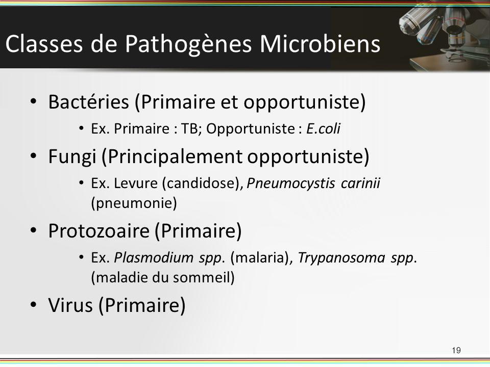Classes de Pathogènes Microbiens Bactéries (Primaire et opportuniste) Ex. Primaire : TB; Opportuniste : E.coli Fungi (Principalement opportuniste) Ex.