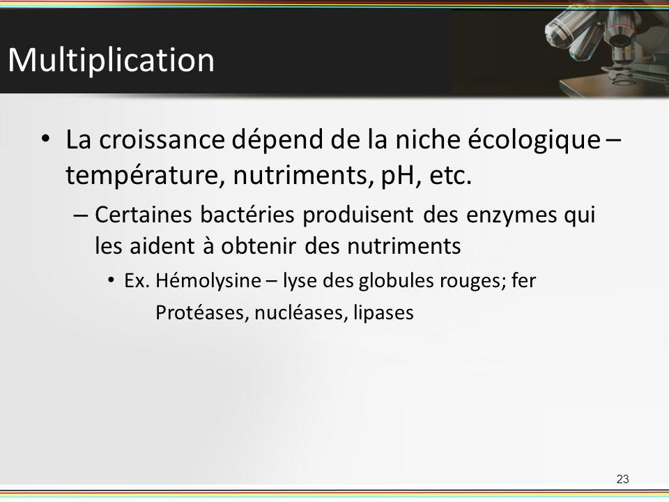 Multiplication La croissance dépend de la niche écologique – température, nutriments, pH, etc. – Certaines bactéries produisent des enzymes qui les ai