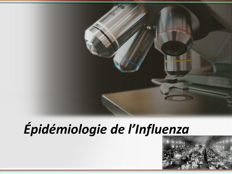 Épidémiologie de lInfluenza 4
