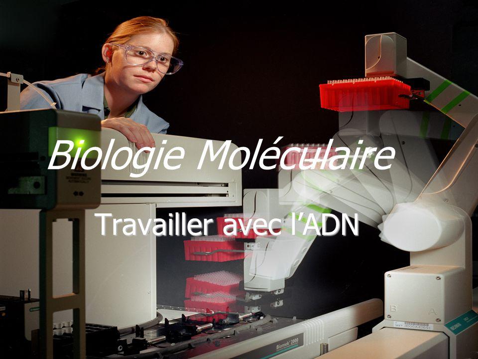 Biologie Moléculaire Travailler avec lADN