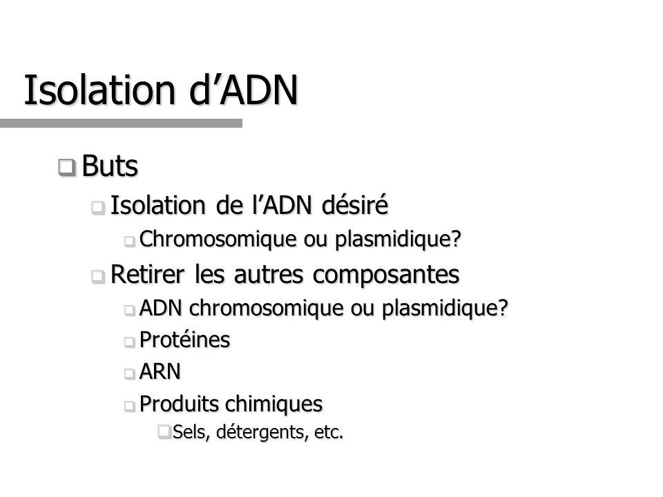 Isolation dADN Buts Buts Isolation de lADN désiré Isolation de lADN désiré Chromosomique ou plasmidique? Chromosomique ou plasmidique? Retirer les aut