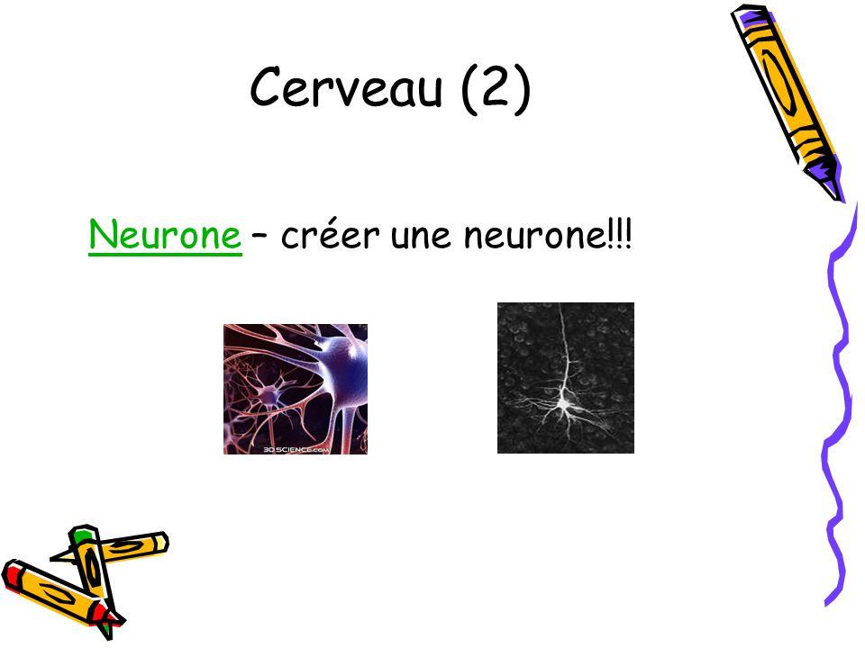 Cerveau (2) NeuroneNeurone – créer une neurone!!!