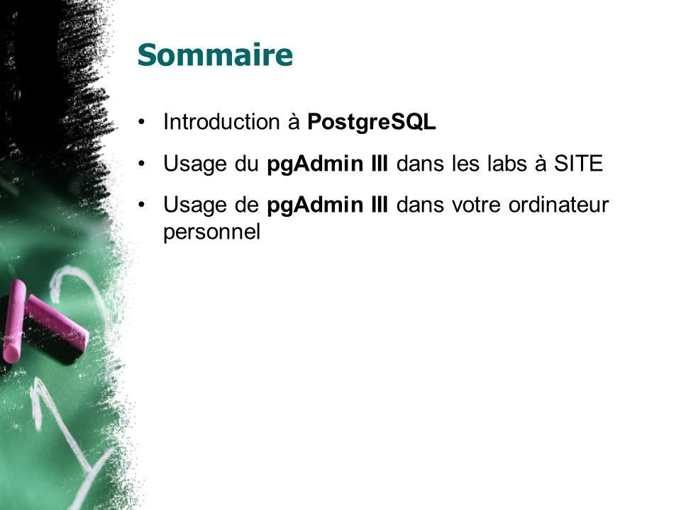 Pour plus d information Sur PostgreSQL: http://www.postgresql.org Sur pgAdmin III: http://www.pgadmin.org Pour les connections à SITE: http://www.site.uottawa.ca/local/labinfo/software/ postgresql.html