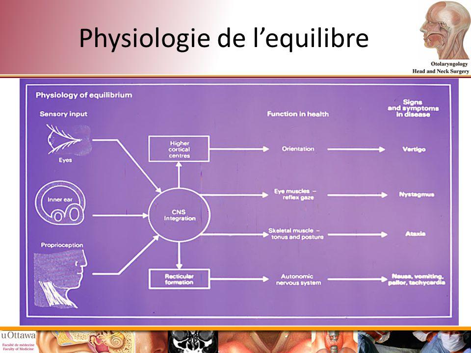 Physiologie de lequilibre