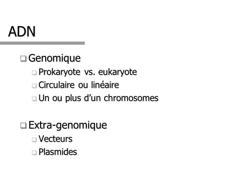 ADN Genomique Genomique Prokaryote vs. eukaryote Prokaryote vs. eukaryote Circulaire ou linéaire Circulaire ou linéaire Un ou plus dun chromosomes Un