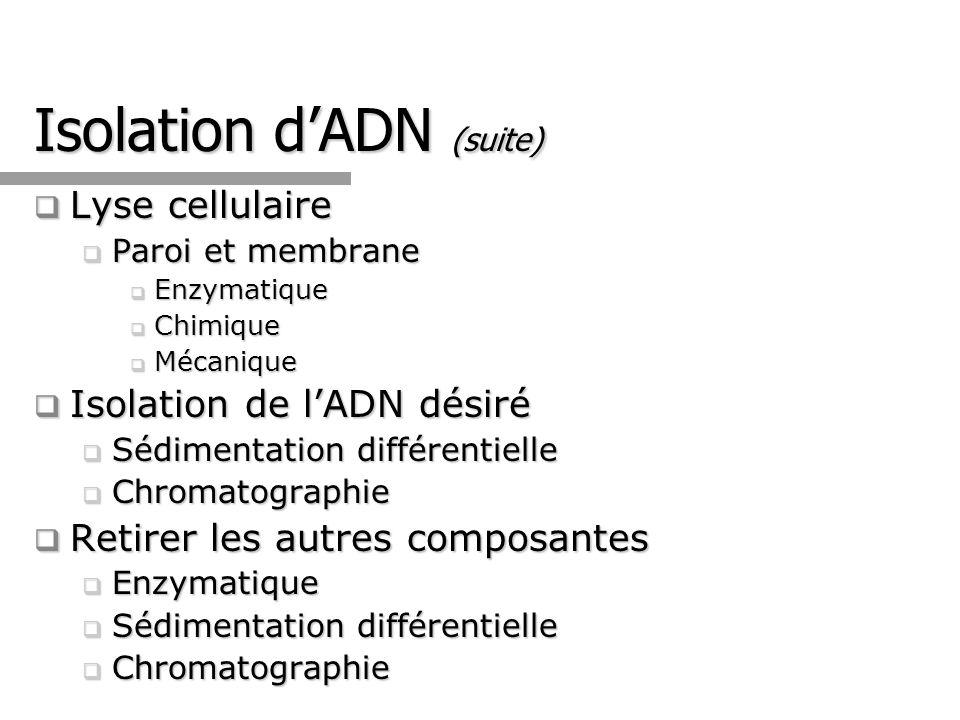 Isolation dADN Plasmidique par Lyse Alcaline (E.coli )