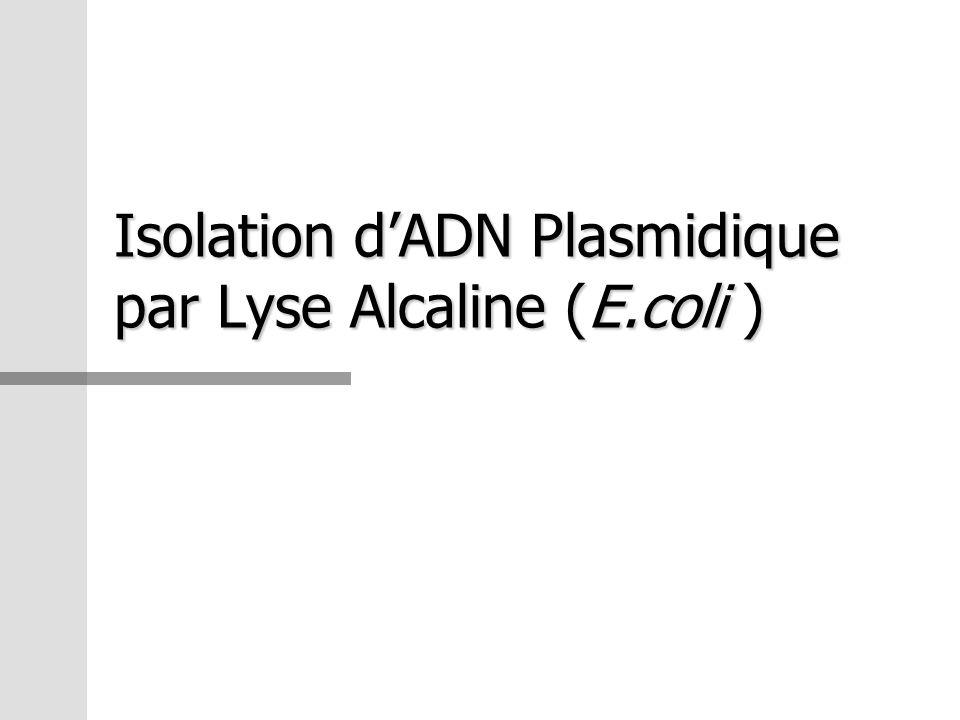 Solutions Utilisées Sol.I – Tampon de suspension Sol.