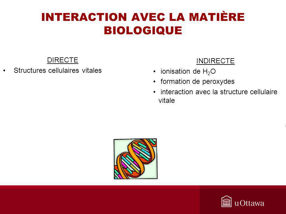 INTERACTION AVEC LA MATIÈRE BIOLOGIQUE DIRECTE Structures cellulaires vitales INDIRECTE ionisation de H 2 O formation de peroxydes interaction avec la