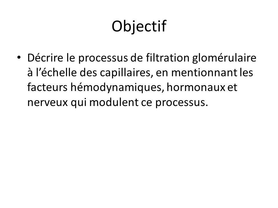 Objectif Décrire le processus de filtration glomérulaire à léchelle des capillaires, en mentionnant les facteurs hémodynamiques, hormonaux et nerveux