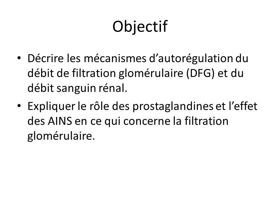 Objectif Décrire les mécanismes dautorégulation du débit de filtration glomérulaire (DFG) et du débit sanguin rénal. Expliquer le rôle des prostagland