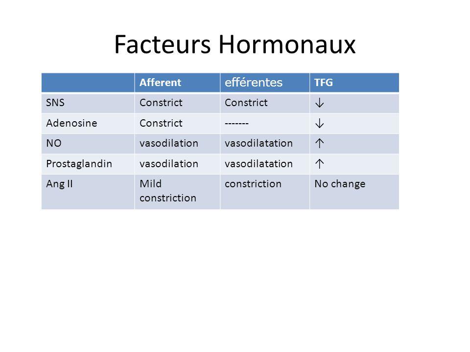 Facteurs Hormonaux Afferent efférentes TFG SNSConstrict AdenosineConstrict------- NOvasodilationvasodilatation Prostaglandinvasodilationvasodilatation Ang IIMild constriction constrictionNo change