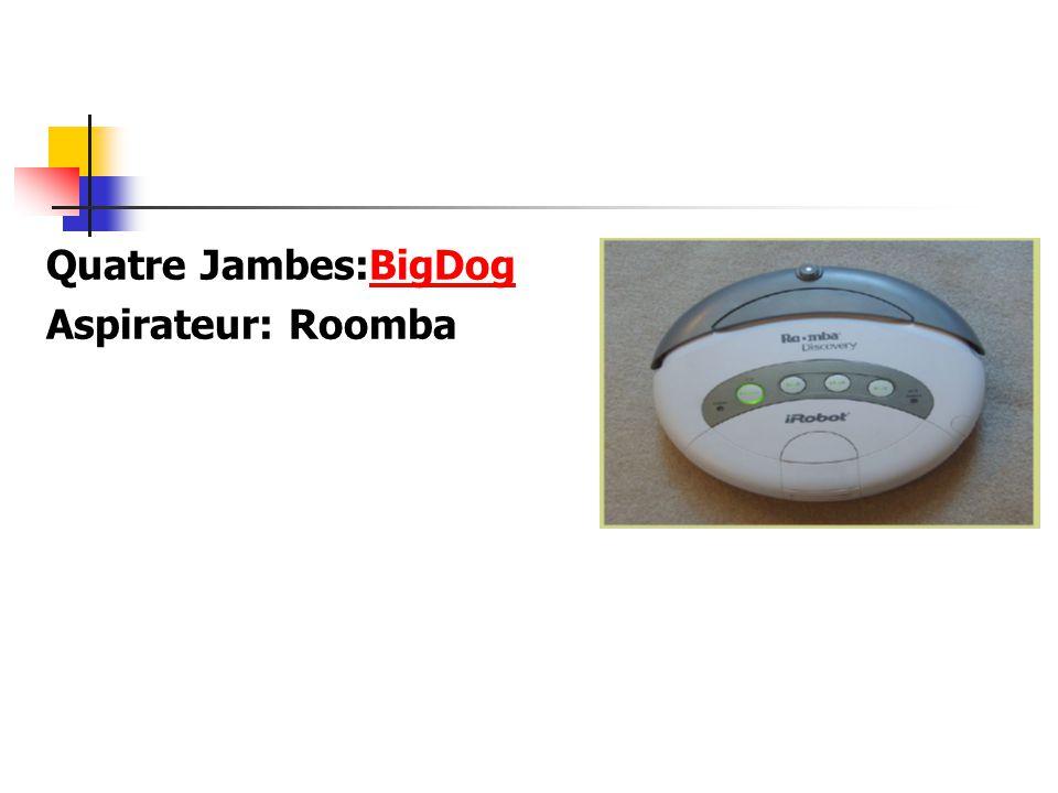 Quatre Jambes:BigDogBigDog Aspirateur: Roomba