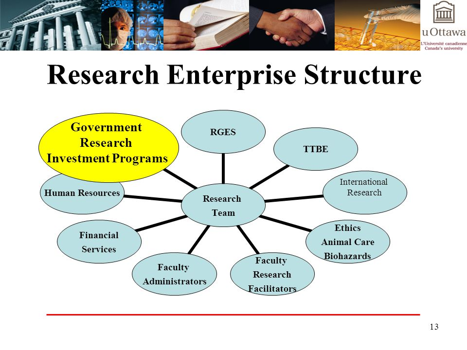 13 Research Enterprise Structure Research Team RGESTTBE International Research Ethics Animal Care Biohazards Faculty Research Facilitators Faculty Administrators Financial Services Human Resources GRIP Government Research Investment Programs