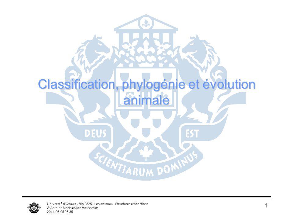 Université dOttawa - Bio 2525 - Les animaux: Structures et fonctions © Antoine Morin et Jon Houseman 2014-06-05 08:37 1 Classification, phylogénie et