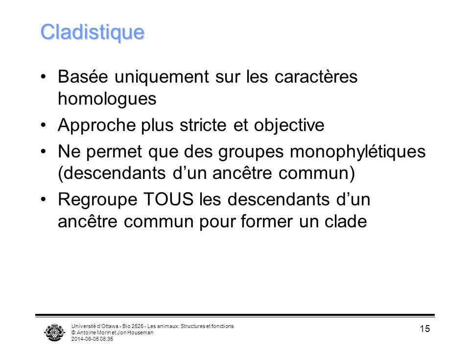 Université dOttawa - Bio 2525 - Les animaux: Structures et fonctions © Antoine Morin et Jon Houseman 2014-06-05 08:37 15 Cladistique Basée uniquement