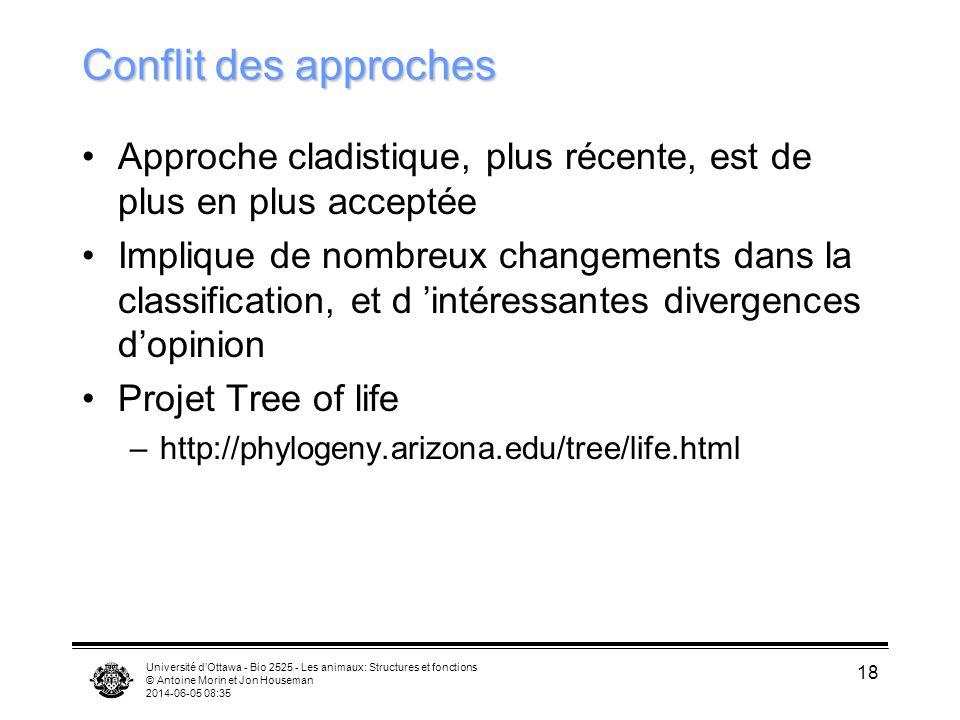 Université dOttawa - Bio 2525 - Les animaux: Structures et fonctions © Antoine Morin et Jon Houseman 2014-06-05 08:37 18 Conflit des approches Approch
