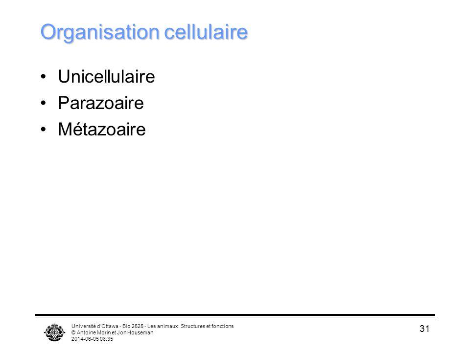 Université dOttawa - Bio 2525 - Les animaux: Structures et fonctions © Antoine Morin et Jon Houseman 2014-06-05 08:37 31 Organisation cellulaire Unice