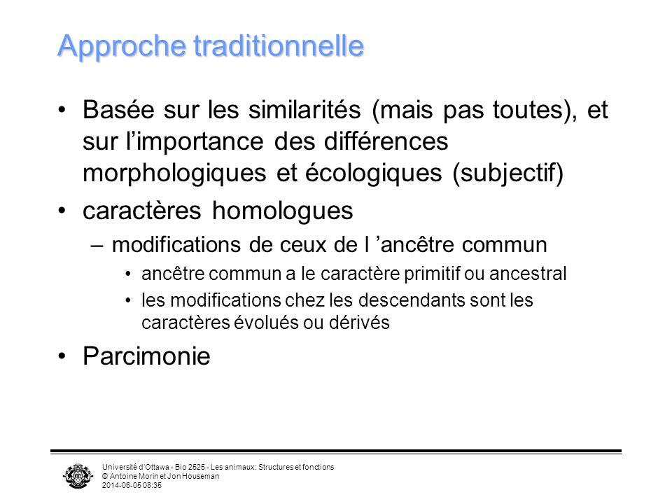 Université dOttawa - Bio 2525 - Les animaux: Structures et fonctions © Antoine Morin et Jon Houseman 2014-06-05 08:37 Approche traditionnelle Basée su