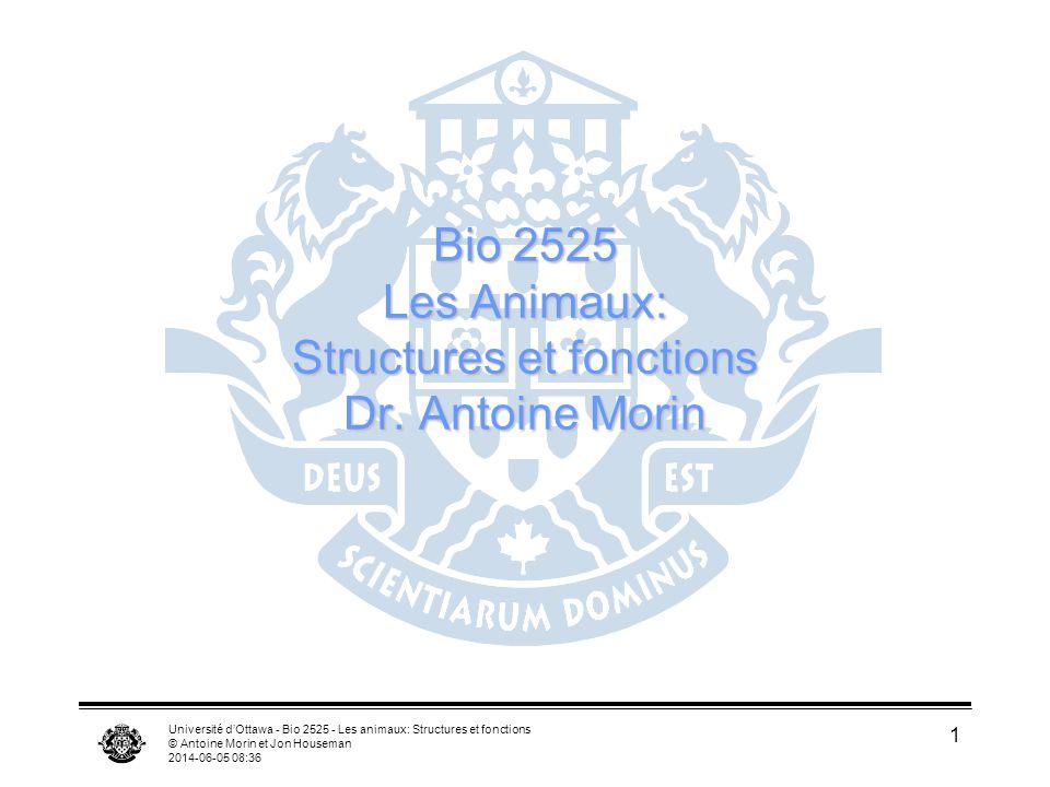 Université dOttawa - Bio 2525 - Les animaux: Structures et fonctions © Antoine Morin et Jon Houseman 2014-06-05 08:38 1 Bio 2525 Les Animaux: Structur