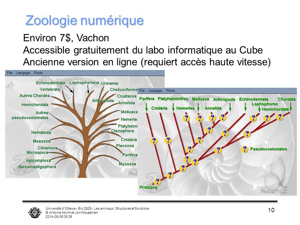 Université dOttawa - Bio 2525 - Les animaux: Structures et fonctions © Antoine Morin et Jon Houseman 2014-06-05 08:38 10 Zoologie numérique Environ 7$