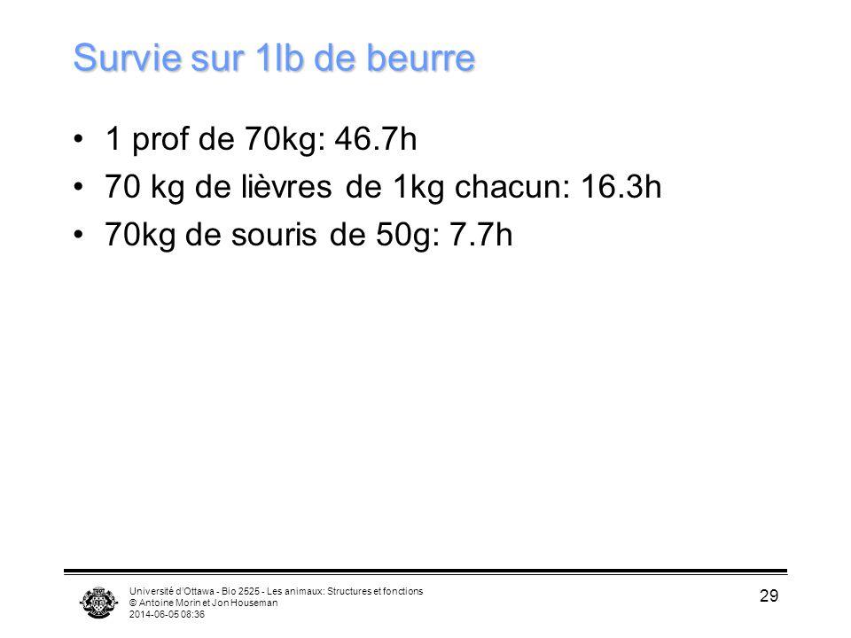 Université dOttawa - Bio 2525 - Les animaux: Structures et fonctions © Antoine Morin et Jon Houseman 2014-06-05 08:38 29 Survie sur 1lb de beurre 1 pr