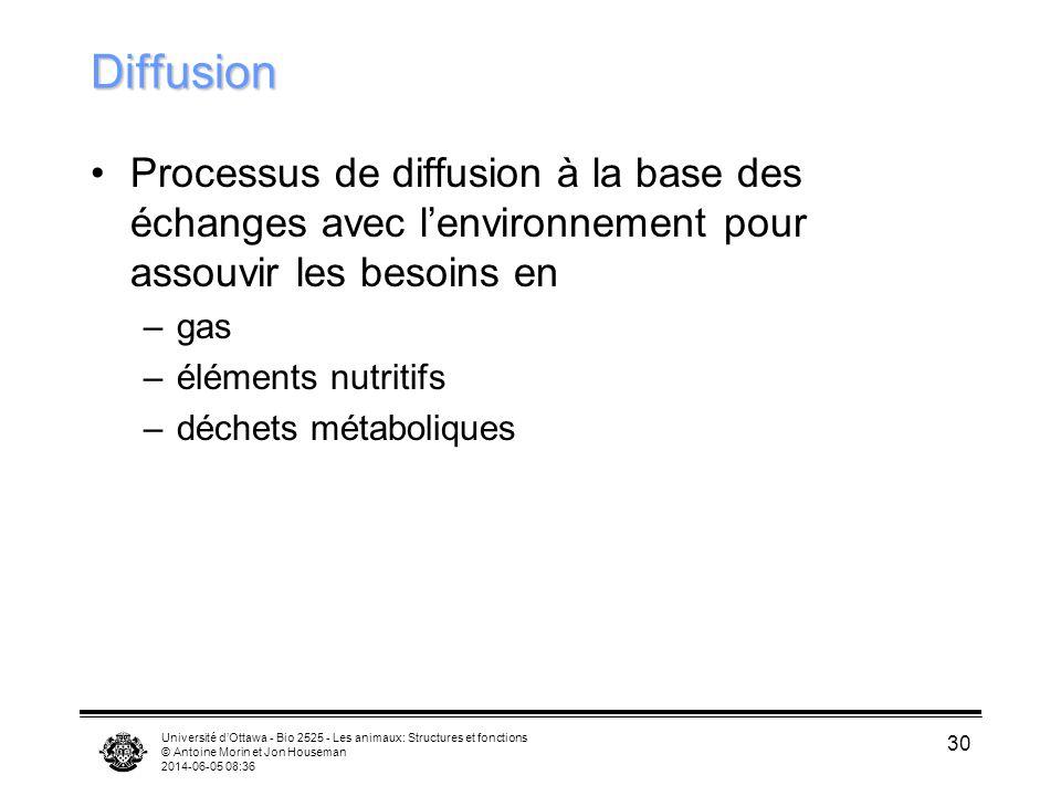 Université dOttawa - Bio 2525 - Les animaux: Structures et fonctions © Antoine Morin et Jon Houseman 2014-06-05 08:38 30 Diffusion Processus de diffus