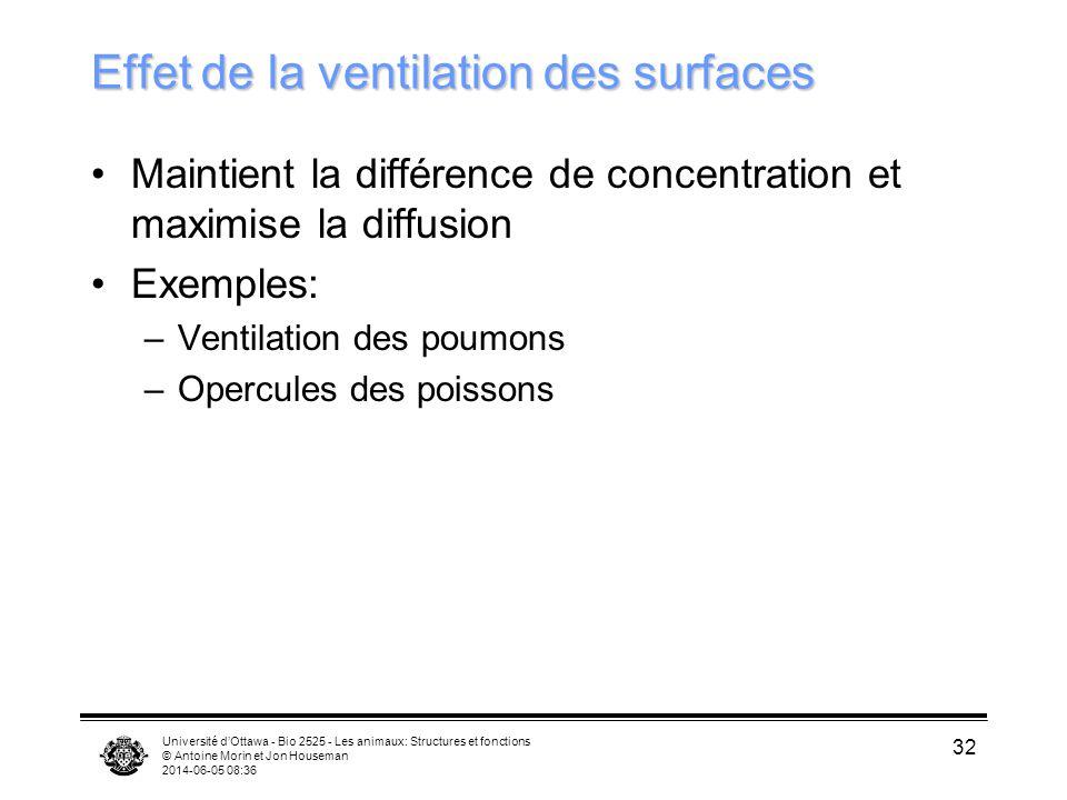 Université dOttawa - Bio 2525 - Les animaux: Structures et fonctions © Antoine Morin et Jon Houseman 2014-06-05 08:38 32 Effet de la ventilation des s