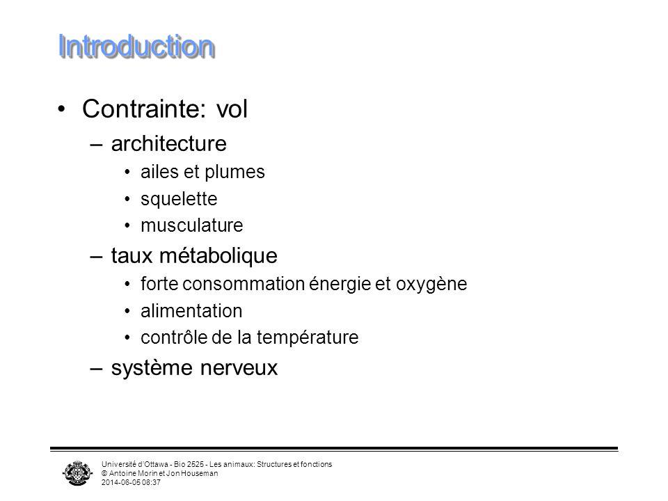 Université dOttawa - Bio 2525 - Les animaux: Structures et fonctions © Antoine Morin et Jon Houseman 2014-06-05 08:39 Principe de continuité et turbulence