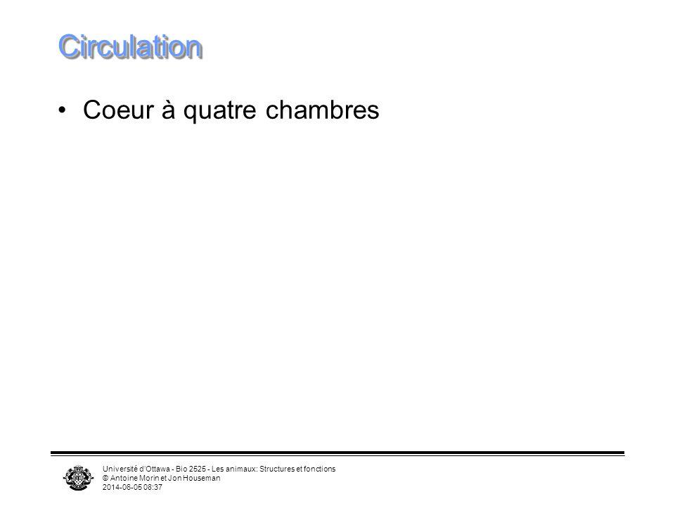 Université dOttawa - Bio 2525 - Les animaux: Structures et fonctions © Antoine Morin et Jon Houseman 2014-06-05 08:39 Ventilation des poumons chez les