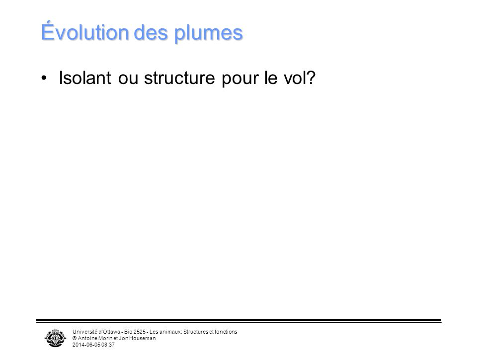 Université dOttawa - Bio 2525 - Les animaux: Structures et fonctions © Antoine Morin et Jon Houseman 2014-06-05 08:39 Évolution des plumes Isolant ou structure pour le vol?