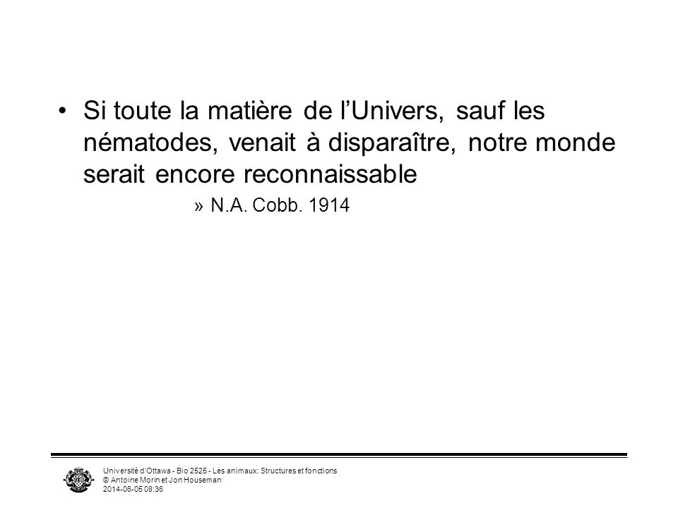 Université dOttawa - Bio 2525 - Les animaux: Structures et fonctions © Antoine Morin et Jon Houseman 2014-06-05 08:39 Si toute la matière de lUnivers,