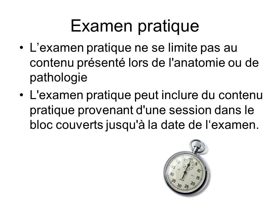 Examen pratique Lexamen pratique ne se limite pas au contenu présenté lors de l anatomie ou de pathologie L examen pratique peut inclure du contenu pratique provenant d une session dans le bloc couverts jusqu à la date de lexamen.